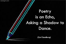 poetry is an echo