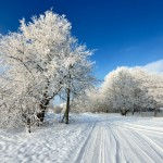 canva winter roads