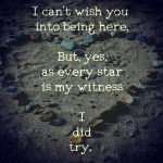 i-did-try